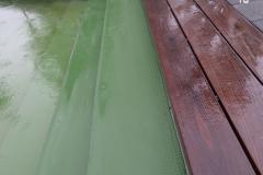 Renovapiscinas-colores-grandes-natural
